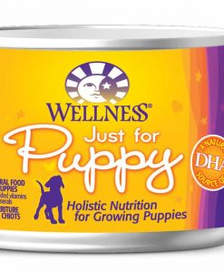 dog_food_wellness_completeHealthPuppy6OZ_wet