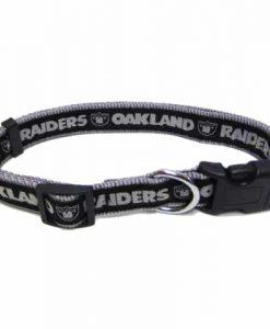 dog_supplies_petsfirst_collar_oakland