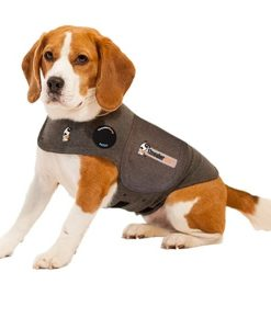 dog_anxiety_thundershirt